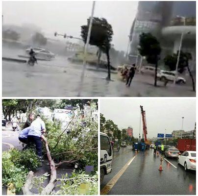 """台风""""海马""""袭广东 多地现灾情 交通大瘫痪(图)"""