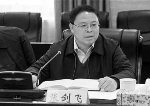 曾被张春贤重用 湖南副省长张剑飞未入常委(图)