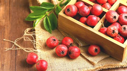 山楂是中国特有的药果兼用树种,有健脾开胃、消食化滞、活血化瘀的功效。