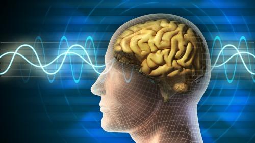 心理学表明,人类的短时记忆一次只能储存5至9个信息块。