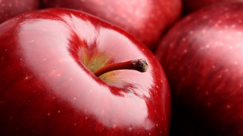 两位母亲分苹果,却造就了两个孩子天壤之别的人生。
