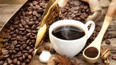全球最贵咖啡:一杯75美元调制咖啡师要接受406小时训练(图)