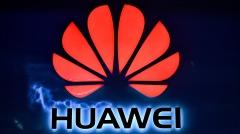 美公司指控华为利用大学教授窃取技术(图)