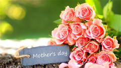 母亲节:感恩有您健康是最珍贵的礼物(组图)