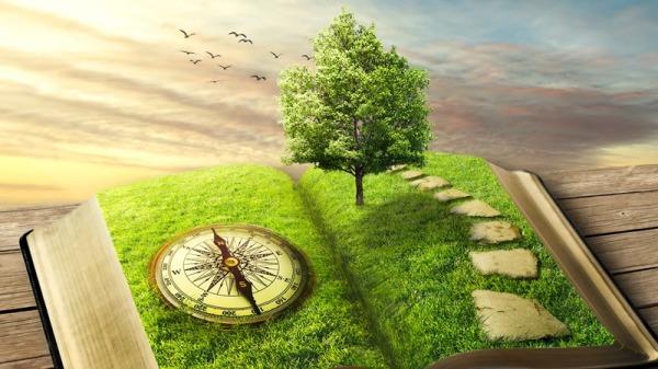 聪明的人,懂得调节自己的情绪,使内心保持安然无恙。