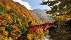 持阿里山林铁票券可与日本黑部峡谷铁道换票(组图)