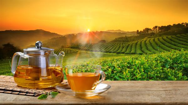 绿茶素会抑止发炎基因,具有抗炎和抗氧化的作用。