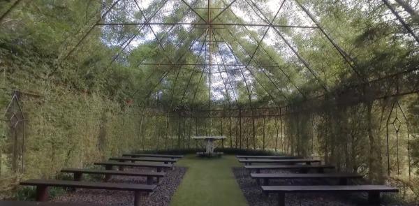树教堂内部