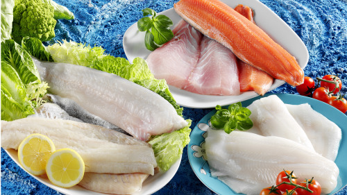 多吃鱼使人更聪明