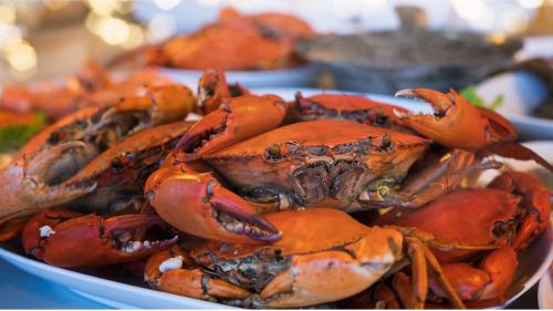 秋季正是吃蟹的好季�。