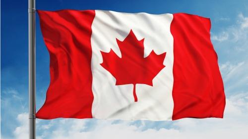 加拿大王家�T警前情�蟛块T主管卡梅��•�W蒂斯(Cameron Ortis)涉嫌�`取��家安全�Y料遭到拘捕起�V,此事��加拿大政府及其盟��造成了震�U