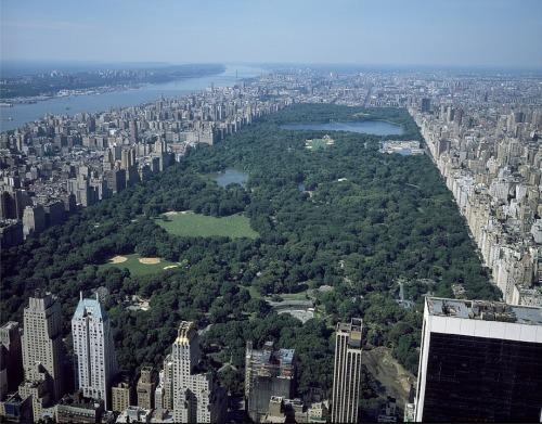 曼哈顿公园中央