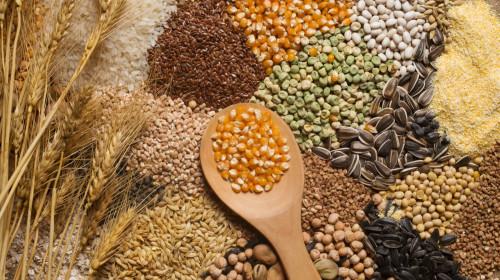 谷物中富含膳食纤维,能降低高血压、糖尿病和高血脂症的发病风险。