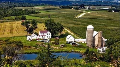 美国爱荷华州的一处农场。