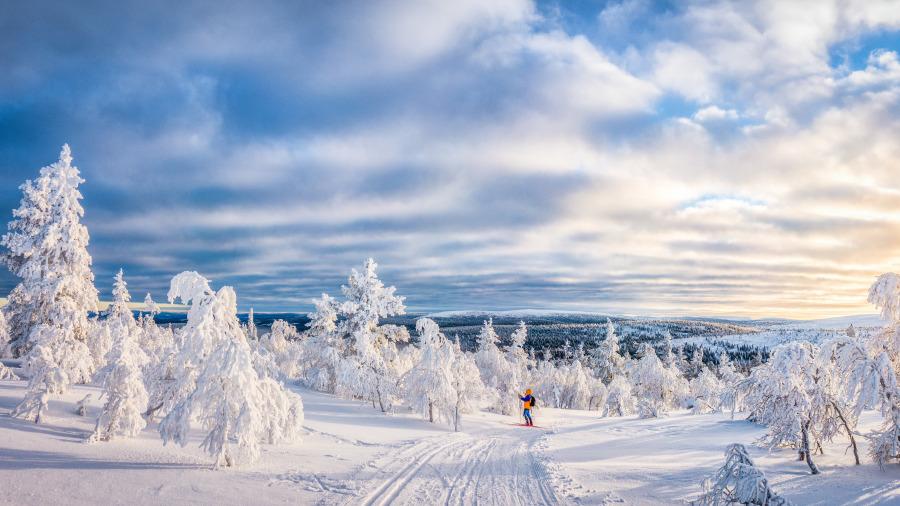 1/3國土在北極。