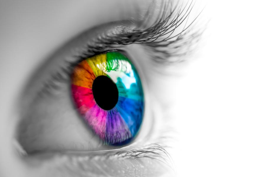 少一個細胞,比普通人多看到幾百種顏色。
