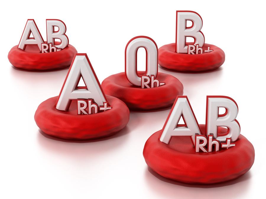 AB型血人群智商最高。