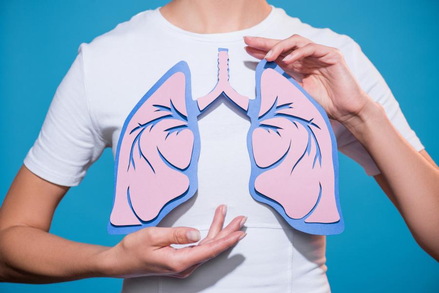 肺脏约有5亿个肺泡,每个肺泡长约0.2毫米,以此计算出的泡肺总面积是70平方公尺(约相当于21坪多)。