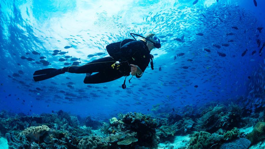 潛水發現海底數以萬計綠寶石,讓他一夜暴富。