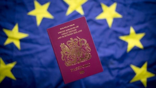 英国脱欧: 撤出伦敦 欧盟药品管理局落户荷兰(图)