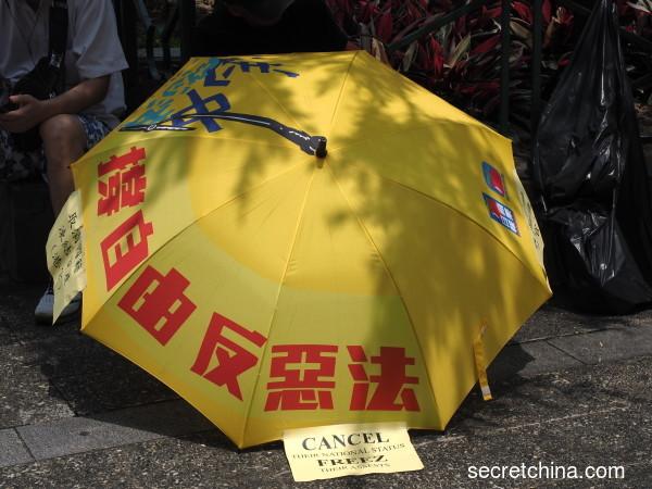 香港人 谢谢你们给我们争自由(图)